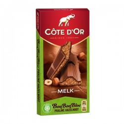 Côte d'Or Bonbonbloc Praline hazelnoot